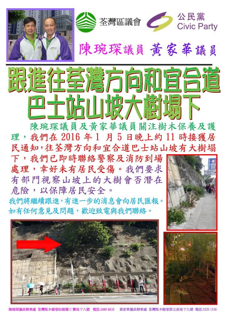 和宜合道往荃灣山坡大樹損壞事宜